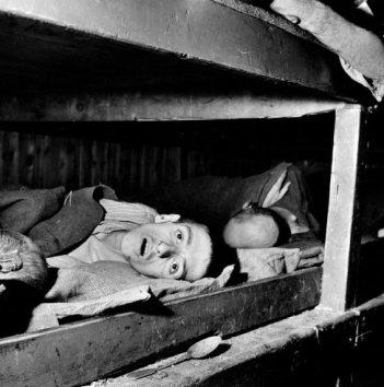 "Margaret Bourke-White, ""אסירים, חלשים מכדי לקום, מחנה הריכוז בוכנוולד בעת השחרור"", אפריל 1945, Life Magazine"