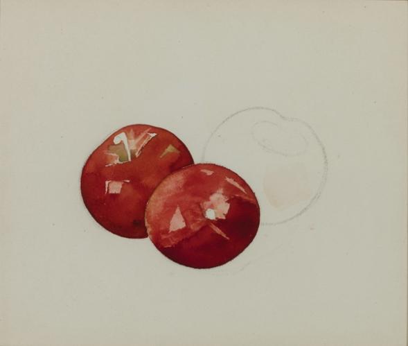 Charles Demuth, 1883-1935, תפוחים, לא מתוארך. צבעי מים על נייר,  The Demuth Museum, Lancaster, Pennsylvania