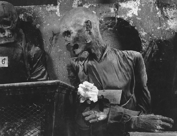 herbert-list-conversation-about-a-rose-palermo-1950-stephen-daiter-gallery-chicago