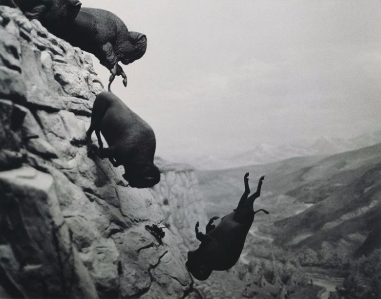 1988-89_untitled_falling_buffalo.jpg